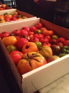 oak tomatoes